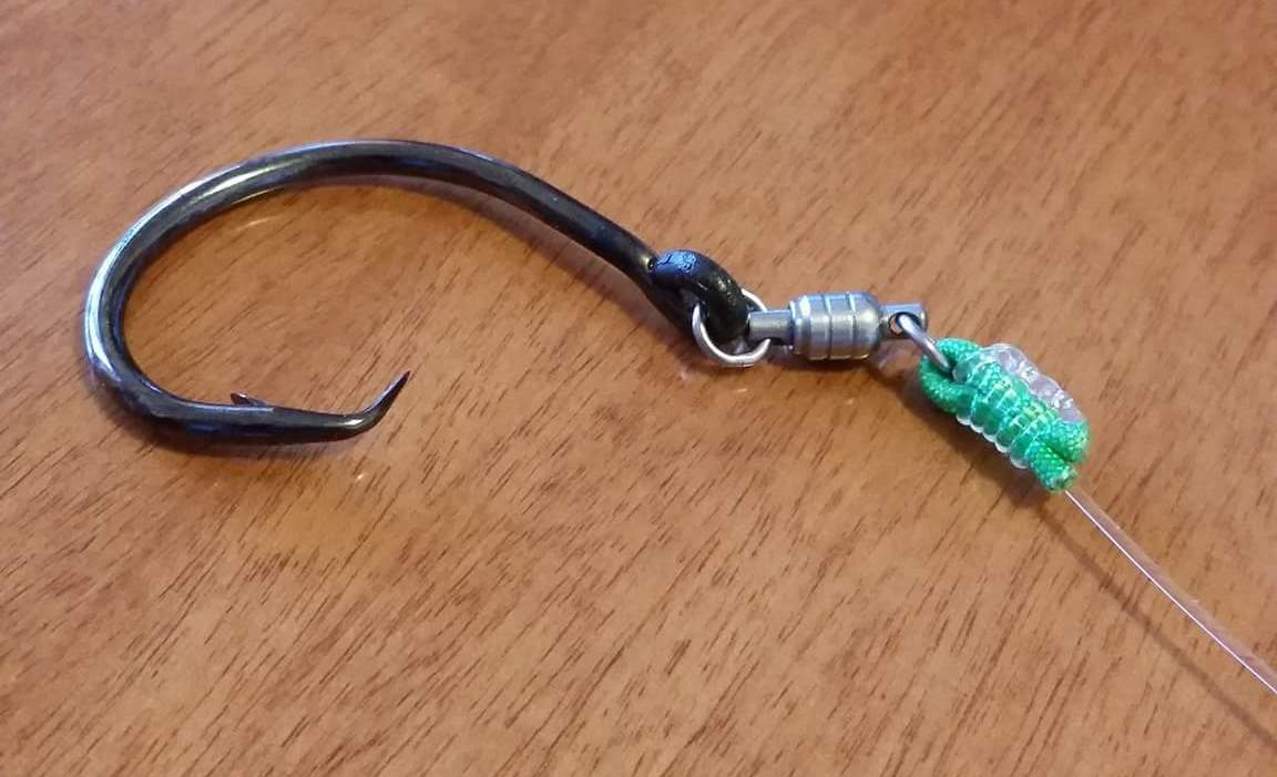Nodo spina con circle hook mustad