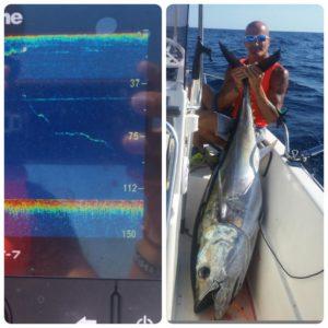 Drifting al tonno - Giulio Tsunami con tonno rosso pescato col vivo